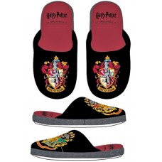 Harry Potter slippers